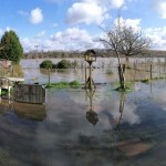Keeping Green Fingers Afloat – Rain With A Chance Of Flooding