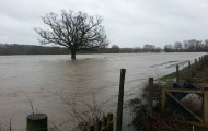 NEWS- Flooding on the Green Fingers Site